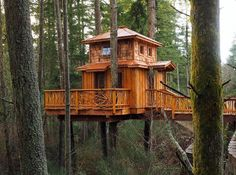 #treehousemovement ❤️ or ? Follow for more tree houses posed daily ©wildtreewoodworks
