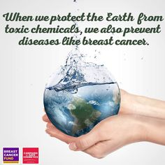 When we protect the Earth from toxic chemicals, we also prevent diseases like breast cancer.