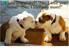~ ♥ ~ I love you more ~ ♥ ~