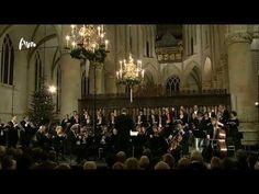 ▶ Bach: Weihnachtsoratorium BWV 248 - Cantate no.6 - Combattimento Consort Amsterdam