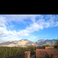 Tucson, my mother's view, a little January R&R.