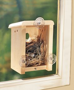 Window Bird House: Window Nest Box Birdhouse | Gardeners.com What an amazing thing it would be to watch birds build a nest and hatch their eggs. A pity the most likely candidates to take up residence would be Indian Minas.