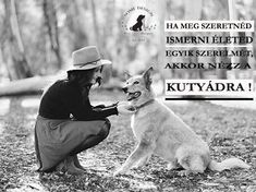 Dog Quotes, I Love Dogs, Animals And Pets, Cowboy Hats, Van, Queen, Animal Pictures, Pets, Quotes For Dogs