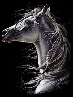 Draw Horses Beautiful horse painting, or possible drawing in pastels. High spirited horse looks amazing. Pencil Drawings Of Animals, Horse Drawings, Realistic Drawings, Art Drawings, Drawing Animals, Painted Horses, Pretty Horses, Beautiful Horses, Arte Equina