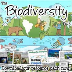 Learn about the amazing variety of life on Earth with our Biodiversity resources! This pack includes a topic guide (in PDF, Powerpoint and video formats), printable activities to try, and display resources to decorate your learning environment. Science Curriculum, Science Resources, Activities, Teaching Packs, Learning Environments, Amphibians, Geography, Habitats, Packing