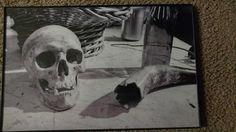 Skull and Bottle Still Life Black and White by SatanicCeramics