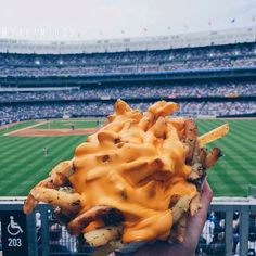 cheese fries yessss