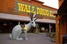"Wall Drug - Wall, South Dakota This is the historic ""Jack-a-lope""!  A cross between a jack rabbit and an antelope. HAAA"