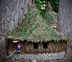 Nestled in the trees we discovered the homes of woodland gnomes