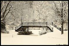 Roger William Park Bridge by Steven Wilkinson via I {heart} Rhody