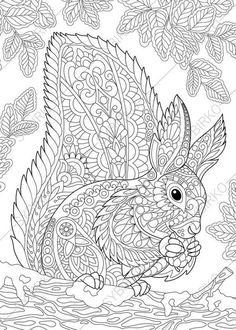 Вектор: Coloring page of squirrel eating pine cone. Freehand sketch drawing for adult antistress coloring book in zentangle style. Free Adult Coloring Pages, Animal Coloring Pages, Coloring Books, Heart Coloring Pages, Doodle Coloring, Mandala Coloring, Squirrel Coloring Page, Zen Colors, Diy Y Manualidades