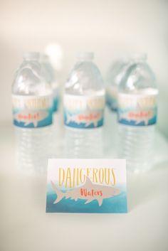 Dangerous Waters Sha