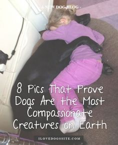 Dogs are the best.