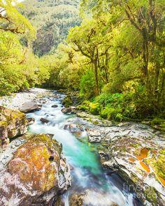The Chasm - Fiordland, South Island, New Zealand