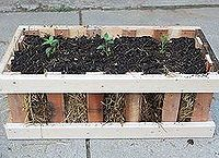 the straw bale pallet crate garden simple attractive and cheap, diy, flowers, gardening, how to, pallet, repurposing upcycling, urban living, A simple crate planter made from pallets and using a straw bale for a growing medium
