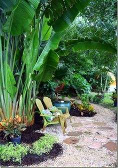 Love the pathway and tall plant-leaves ---(the gorgeous garden belonging to LInda from the Lime in the Coconut blog)