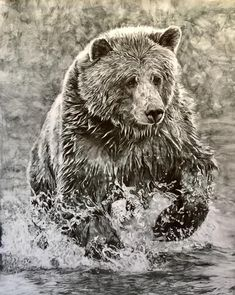 Artist Cherly Volz so perfectly captured the charging bear in my story.