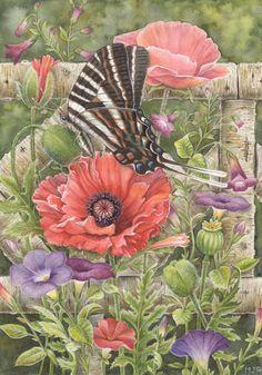 Martin Ryan / Watercolor / Martin's Wildlife Art / Illustrations. Обсуждение на LiveInternet - Российский Сервис Онлайн-Дневников