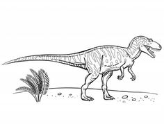 preschool dinosaur coloring pages