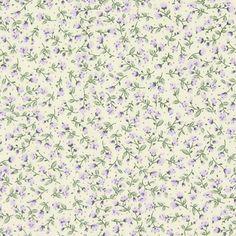 Cotton flower crissi 1