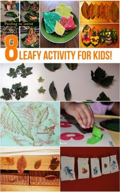 8 Leaf Activities for Kids on It's Playtime!