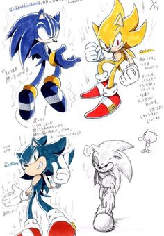 I'm starting to think Sonic has split personality disorder Sonic And Amy, Sonic And Shadow, Sonic The Hedgehog, Pheonix Drawing, How To Draw Sonic, Sonic Underground, Steven Universe Drawing, Gamers Anime, Sonic Franchise