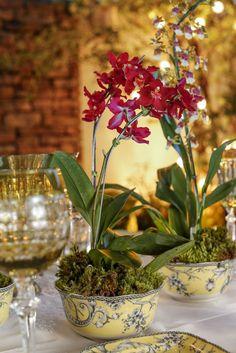 Bowls da Coleção Petrópolis Amarela abrigaram orquídeas plantadas em tons variados de rosa, laranja e amarelo.