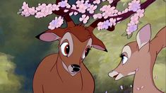 Bambi Film, Bambi Disney, Young Prince, Classic Films, Disney Pictures, Print Pictures, Disney Movies, Scooby Doo, Seasons