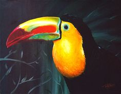 Tucan by ~troyslater on deviantART