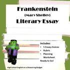 Essay frankenstein literary