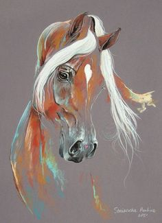 Chestnut Arabian Horse Art Print by Paulina Stasikowska Horse Drawings, Animal Drawings, Art Drawings, Arte Equina, Horse Sketch, Horse Artwork, Cowboy Art, Horse Print, Pastel Art