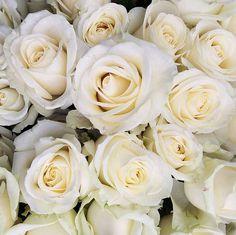 Saturday Blooms  #Stylebykimxo #saturdayflowers #roses #myfavoriteflowers by stylebykimxo