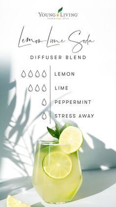 Young Essential Oils, Essential Oils Guide, Diffuser Recipes, Essential Oil Diffuser Blends, Living Oils, Smoothies, Yl Oils, Doterra Oils, Diffusers