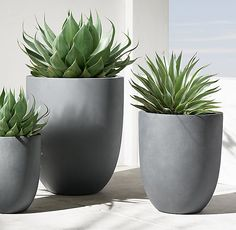 RH Modern's Miramar Planter:At once substantial and streamlined, our Miramar planter reflects modernism's simplicity and purity of form. Weathered for aged appeal, the vessel is handcrafted of eco-friendly fiberglass and is lightweight, durable and offers superior frost resistance.