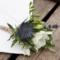 with a brighter blue thistle