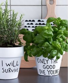 Planting fun! A sharpie marker can give pots a little attitude.