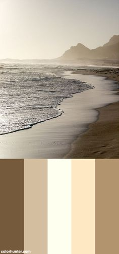 Sepia Surf Color Scheme from colorhunter.com Beach Color Palettes, Beige Color Palette, Color Schemes Colour Palettes, Paint Color Schemes, Bedroom Color Schemes, Colour Pallete, Paint Colors, Website Color Palette, Color Combinations For Clothes