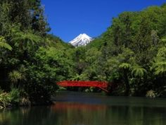 View of Poet's Bridge in Pukekura Park with Mt Taranaki in the background.Often described as the jewel in New Plymouth's crown, Pukekura Park covers 52ha (128 acres) right in the heart of the city and is one of New Zealand's premier botanical gardens.