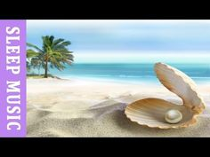 Music to Relax & Sleep | SEA OF DREAMS | calming music, meditation music, relaxing music - YouTube