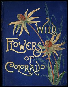Wild flowers of Colorado - Catalog - UW-Madison Libraries