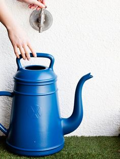 Lungo Watering Can's design is based on an old-fashioned coffee pot. Xala from Antwerp, Belgium. $35 from Neo-Utility.