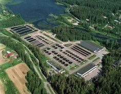 TYÖKOKEMUS: Kalatalouden perustutkintoon liittyvän harjoittelun työskentelin Riista- ja kalatalouden tutkimuslaitoksella 12.5.1997 - 2.8.1997. Yksikkönä oli Saimaan kalantutkimus ja vesiviljely, joka sijaitsee Enonkoskella. Saimaan laitos tunnetaan erityisesti biodiversiteettimenetelmien kehittämisestä ja uhanalaisten kalakantojen tutkimuksesta.