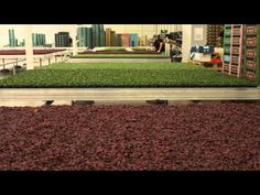 Oranje Handelsmissie Fonds - Rob Baan