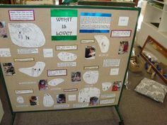 Reggio Inspired Play Based Learning in Prep Inquiry Based Learning, Project Based Learning, Early Learning, Reggio Emilia Classroom, Reggio Inspired Classrooms, School Displays, Classroom Displays, Classroom Ideas, Classroom Design