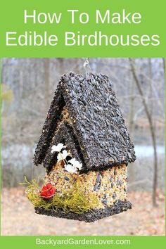Here's how to make edible birdhouses for all kinds of birds. You can make your own DIY edible bird houses with seeds, nuts, raisings, graham crackers and peanut butter. Then watch your feathered friends enjoy a nice meal and delight in seeing them. #birds #wildlife #backyard #birding #wildlife #garden