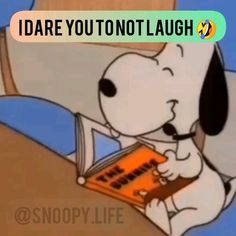 Snoopy Shop, Snoopy Love, Snoopy And Woodstock, Snoopy Images, Snoopy Pictures, Funny Pictures, Videos Funny, Funny Memes, Hilarious