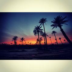 Palmeraie sunset by Yann Skylitzes @Hotel Les Deux Tours Marrakech - march 2014