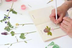 Een plantenpers gebruik je om je bloemen en planten in kunt persen / drogen voor een herbarium. Op mijn blog leg ik uit hoe je eentje van een handzaam formaat makkelijk zelf kunt maken. Flower Crafts, Diy Flowers, Flower Art, Nature Journal, How To Preserve Flowers, Leaf Art, Botanical Art, Diy For Kids, Making Ideas