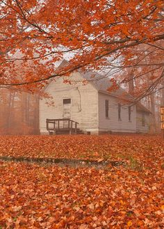 Country church on beautiful autumn day Autumn Scenes, Autumn Aesthetic, Seasons Of The Year, Foto Art, Fall Pictures, Fall Pics, Autumn Inspiration, Fall Season, Beautiful Places