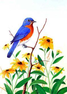 """Bluebird and Black-Eyed Susans"""